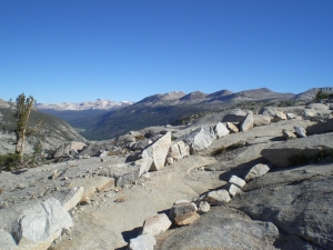 trail near donahue pass