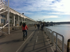 One of the well developed stretches of the Sava river front