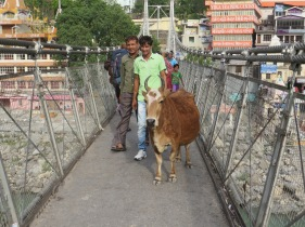 Normal foot traffic on the bridge. Pretty soon here I'm going to have to blog about the cows of India