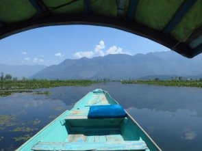 Looking out at Dal Lake from where the wetlands end and the water spreads uninterrupted in all directions